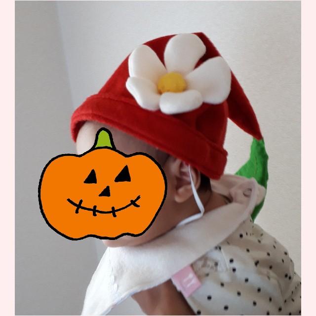 f:id:misami-33:20201031094910j:plain