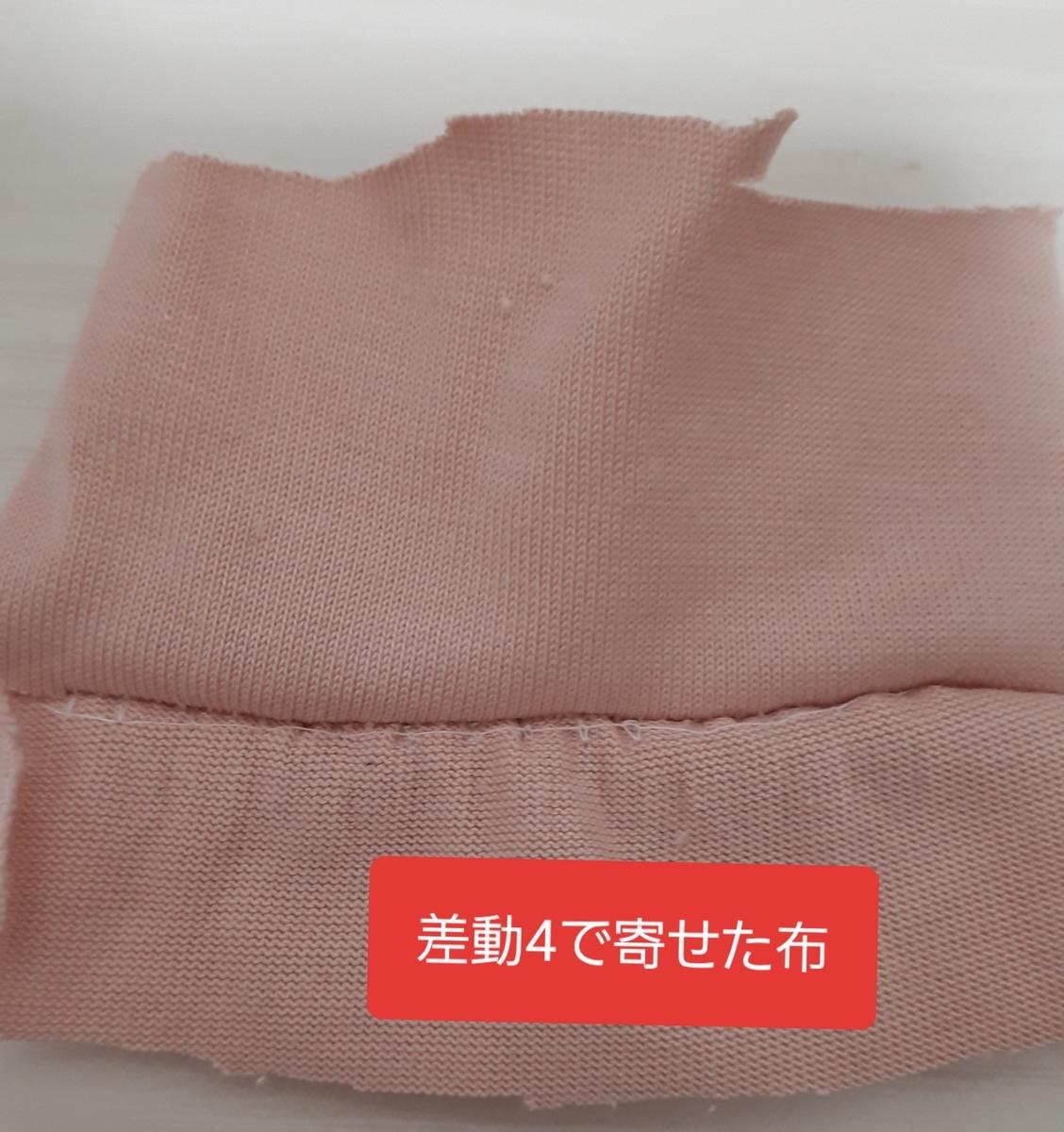 f:id:misami-33:20201202225915j:plain
