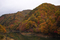 紅葉 - 葛丸ダム上流