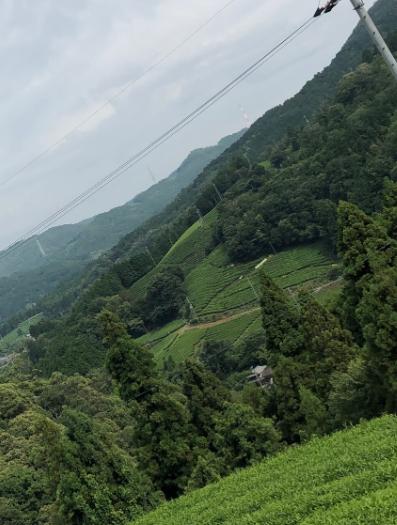 f:id:misato_mikan:20190901205958p:plain