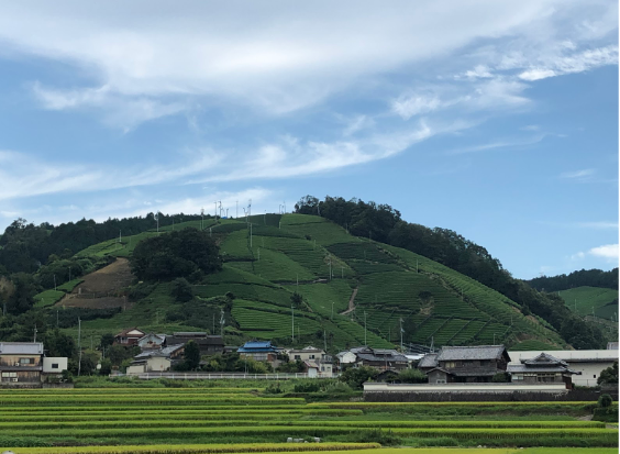 f:id:misato_mikan:20190901210329p:plain