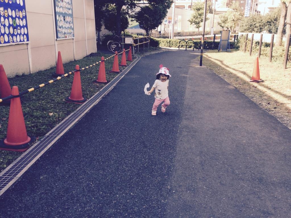 f:id:misatohayashi:20161020092741j:plain