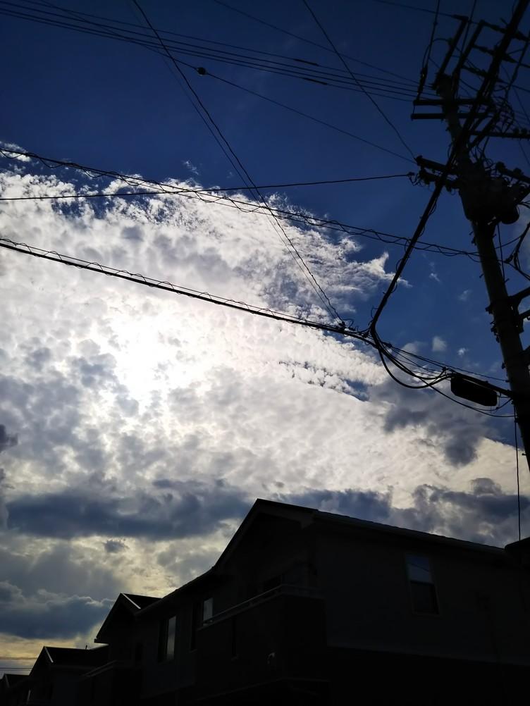 f:id:misatohayashi:20190727183710j:plain