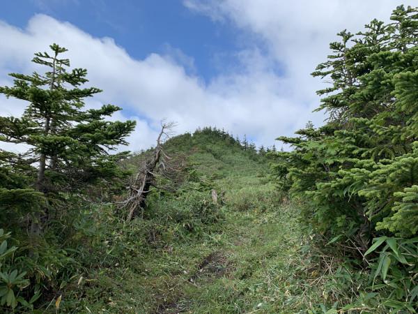 三岩岳 頂上付近
