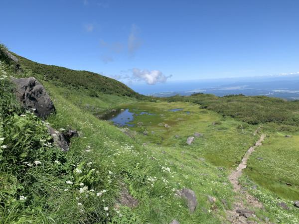 鳥海山 湿地