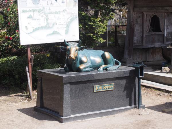 円蔵寺 牛