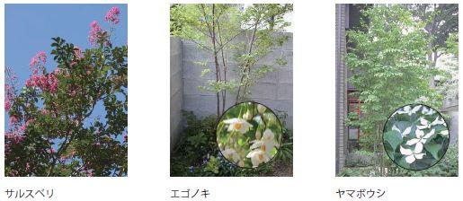 f:id:misawahome:20181015181650j:plain