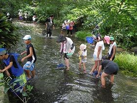 f:id:mishima-river:20140527173755j:image