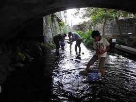 f:id:mishima-river:20140527175358j:image