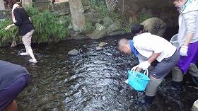 f:id:mishima-river:20140527175400j:image