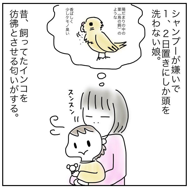 f:id:mishimasaiko:20200110094823j:plain