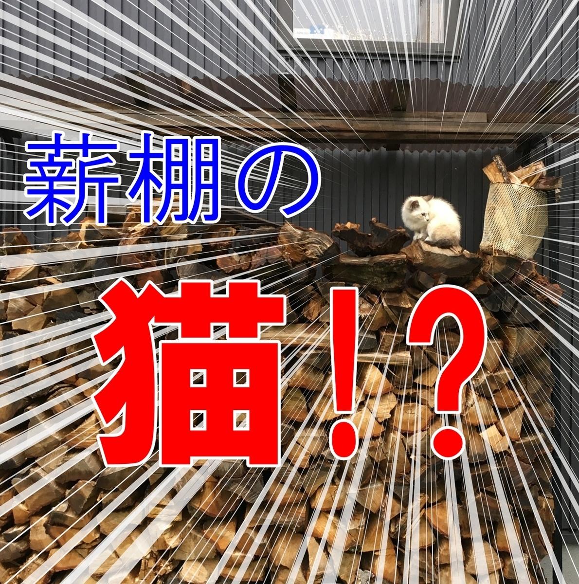 f:id:mishimasaiko:20200721130637j:plain