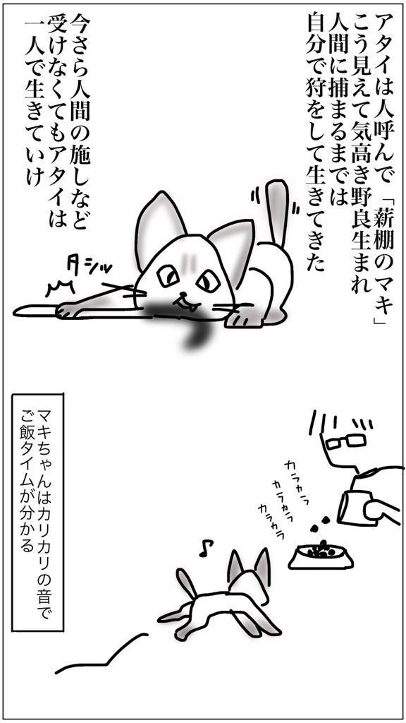 f:id:mishimasaiko:20200926134529j:plain