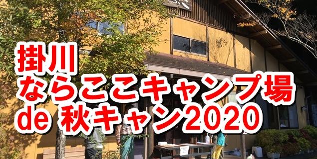 f:id:mishimasaiko:20201123150816j:plain