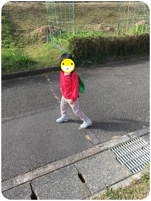 f:id:mishimasaiko:20201130164022j:plain