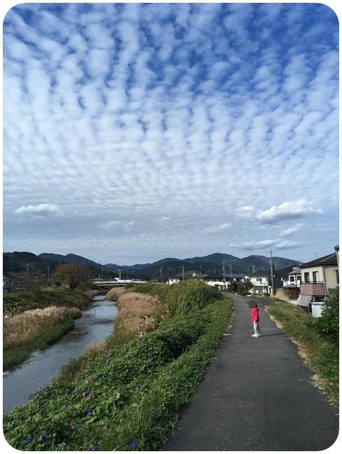 f:id:mishimasaiko:20201130164102j:plain