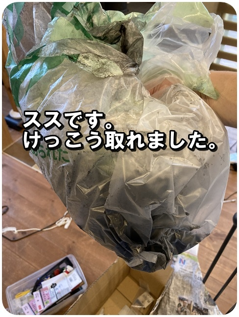 f:id:mishimasaiko:20210531154242j:plain