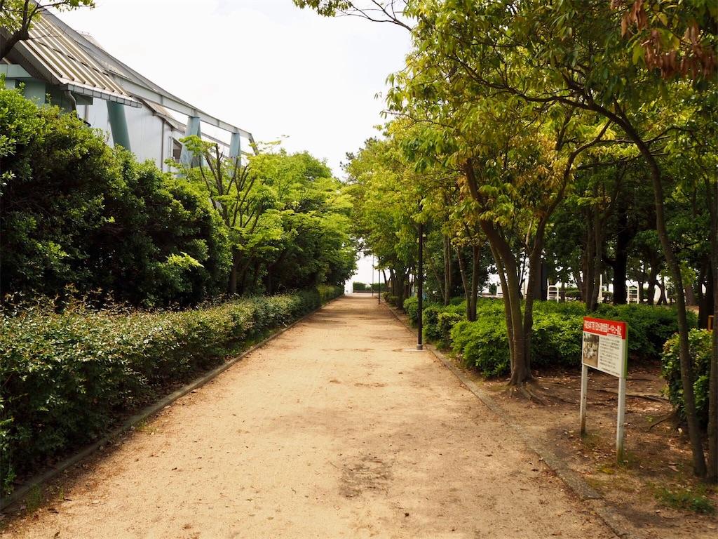 f:id:mishiro_0u0:20180516163235j:image