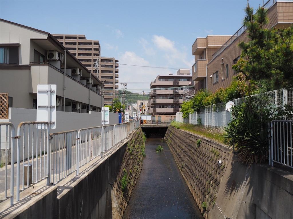 f:id:mishiro_0u0:20180516163332j:image