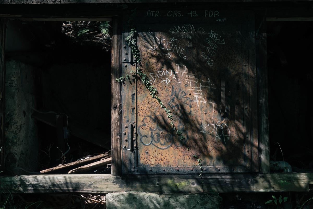 写真:嵐山の錆びた扉と蔦