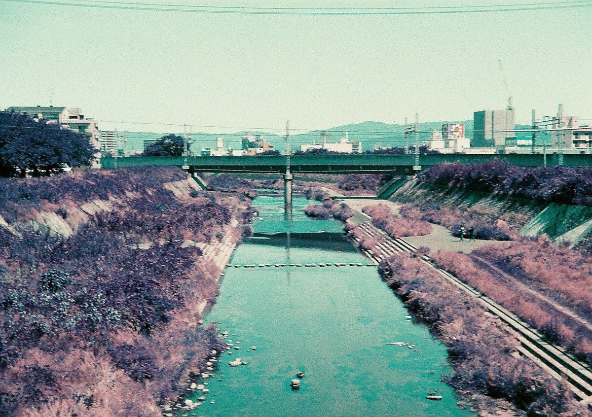 写真:Lomochrome Purple
