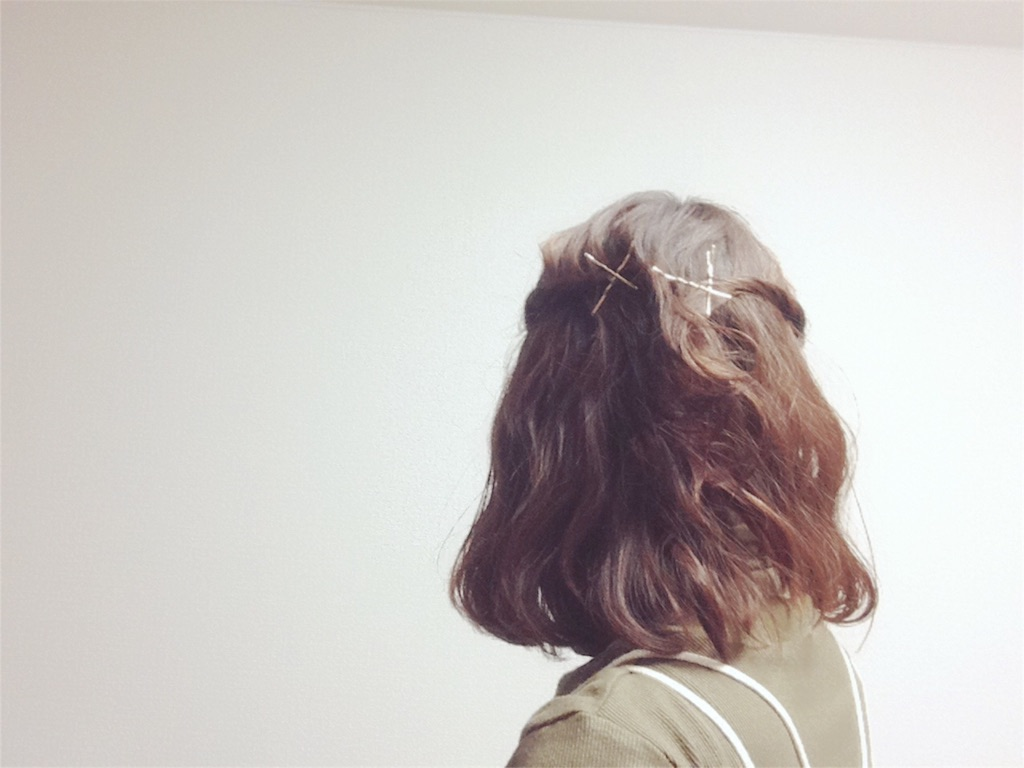 f:id:mismiura:20161228235701j:image