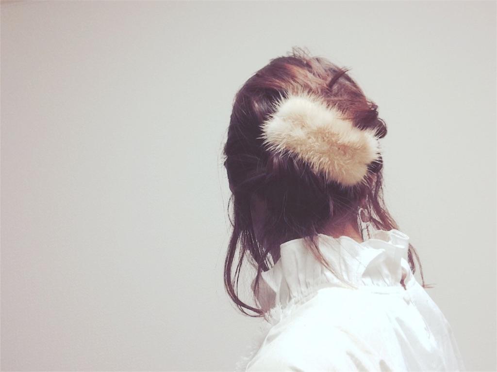 f:id:mismiura:20161229001626j:image