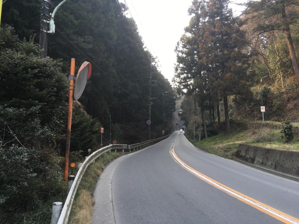 f:id:misohara-seedplan:20170406143735j:plain