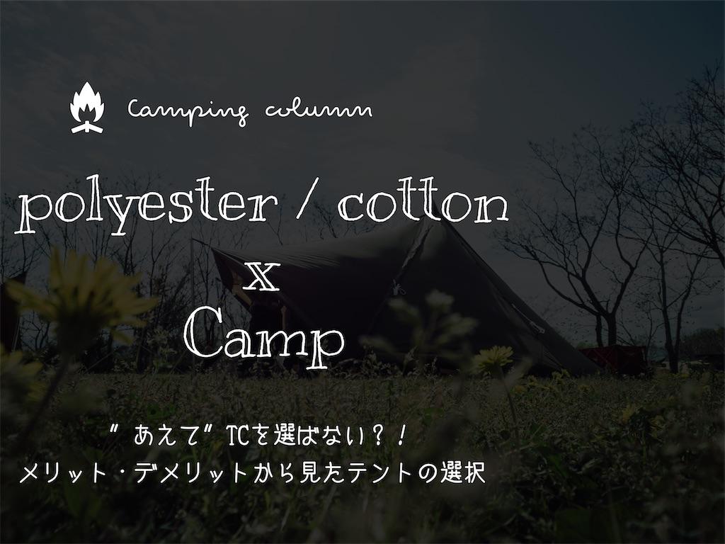 f:id:misojicamp:20210404203138j:image