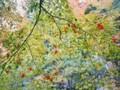 [風景][植物]071120 紅葉