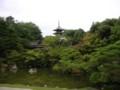 仁和寺 - 北庭と五重塔