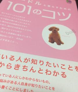 f:id:misumi-tomo:20190408200938j:plain