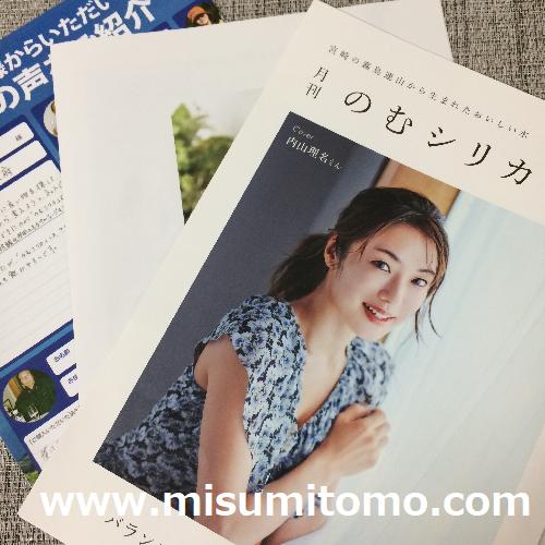 f:id:misumi-tomo:20190703171518p:plain