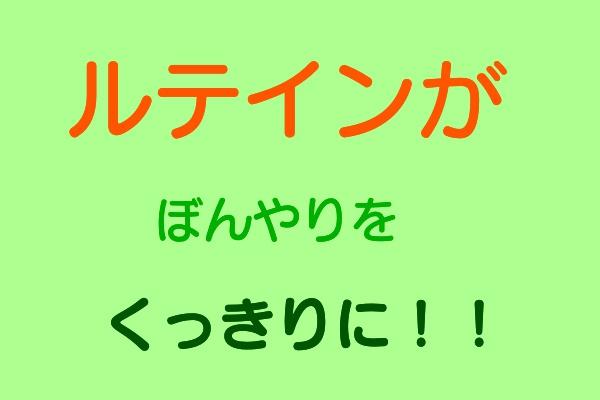 f:id:misumi-tomo:20190923172456j:plain