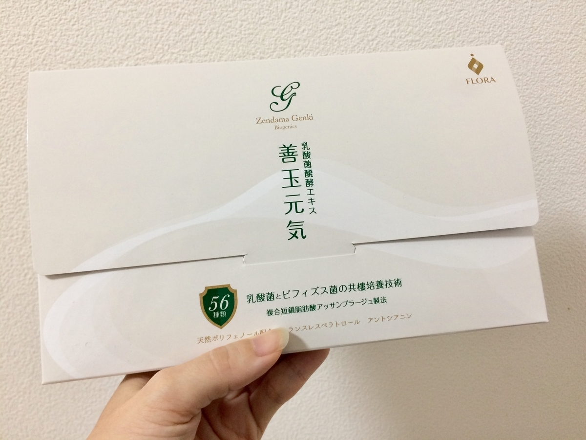 f:id:misumi-tomo:20191212205344j:plain