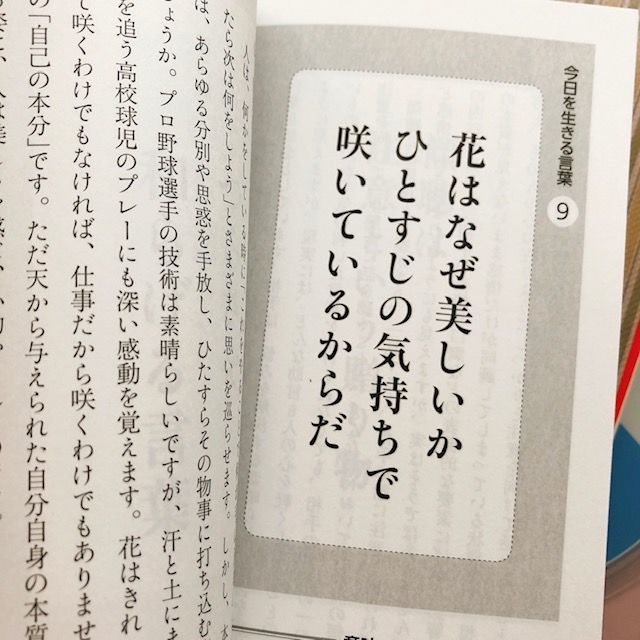 f:id:misumisu0722:20191126161532j:plain