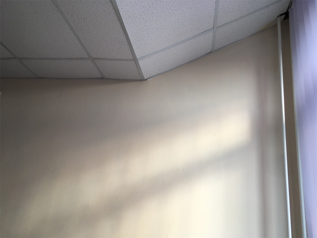 f:id:mit0maru:20210523040947j:image