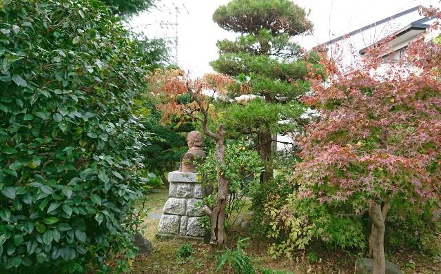 f:id:mitaka_natsu:20181118192045j:image