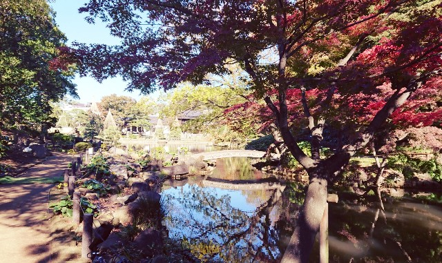f:id:mitaka_natsu:20181124121159j:image