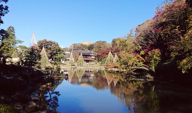 f:id:mitaka_natsu:20181124121227j:image
