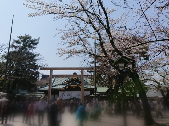f:id:mitaka_natsu:20190327181747j:image