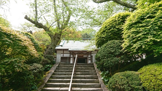 f:id:mitaka_natsu:20190422142758j:image