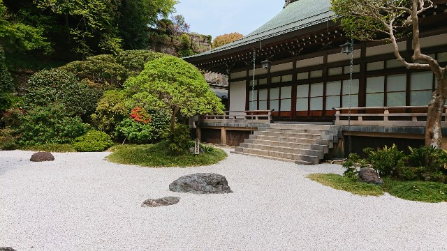 f:id:mitaka_natsu:20190422143005j:image