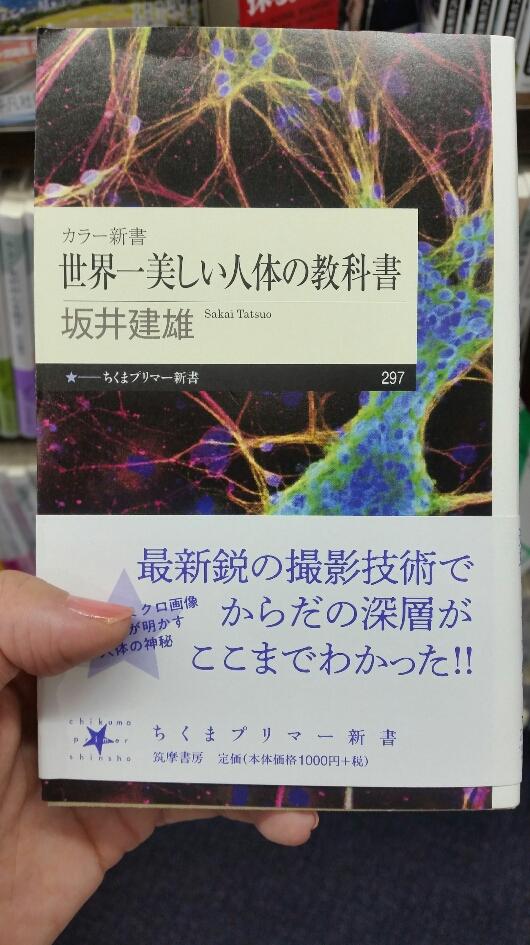 f:id:mitasu-mitasu:20190810112829j:plain
