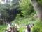 [鎌倉][長谷][長谷寺][あじさい][アジサイ][紫陽花][2015紫陽花]