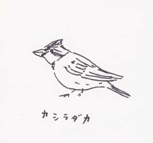 f:id:mitiyoblog:20110426231245j:image