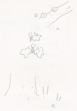 f:id:mitiyoblog:20120519193126j:image