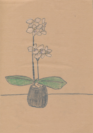 f:id:mitiyoblog:20120921235123j:image