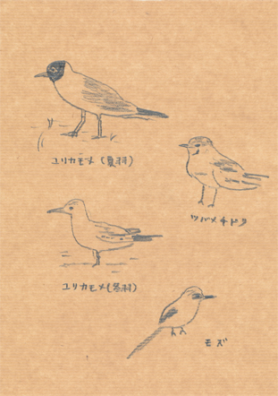 f:id:mitiyoblog:20120924172452j:image