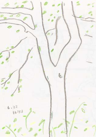 f:id:mitiyoblog:20140623150822j:image